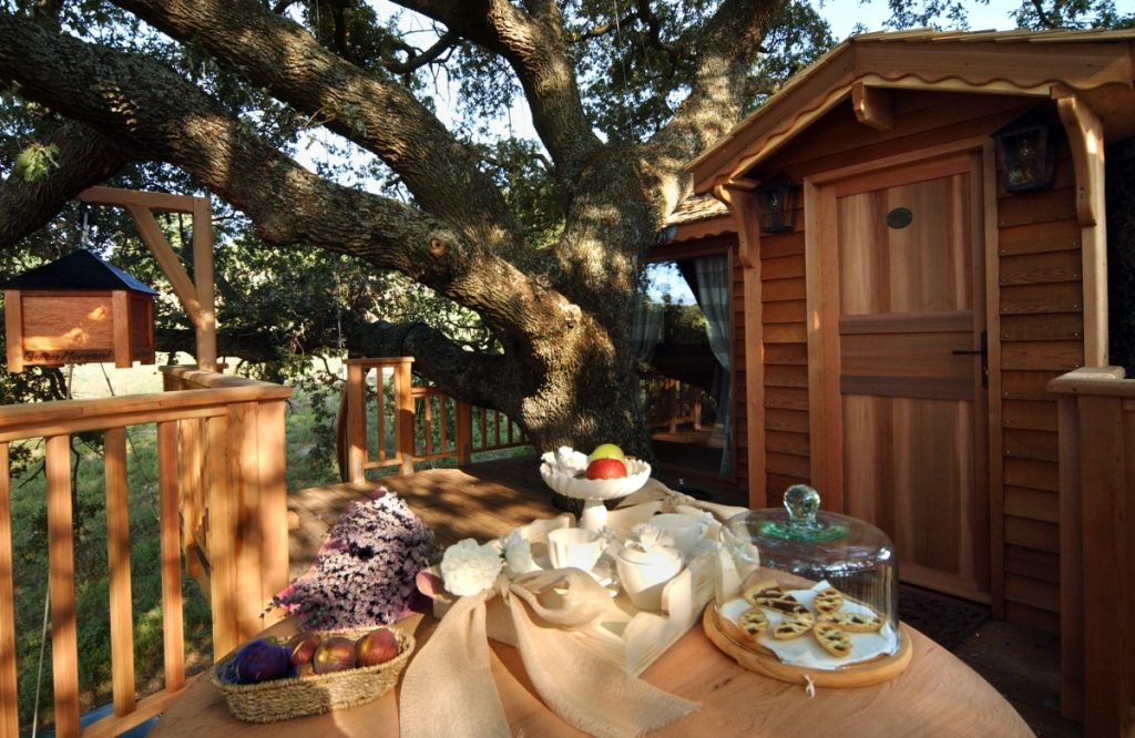 Dormire in una casa sull'albero colazione